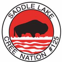 Saddle logo